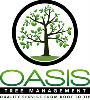 Tree Management Brisbane Southside